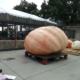1045.4 lbs Pumpkin